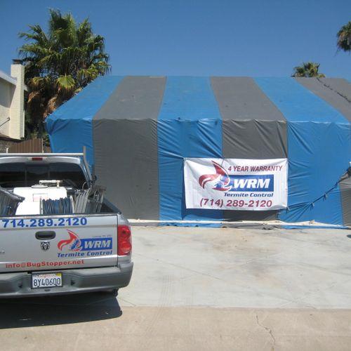 Drywood Termite Fumigation with a 4 Year Warranty!