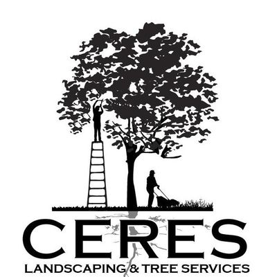 Avatar for Ceres Services