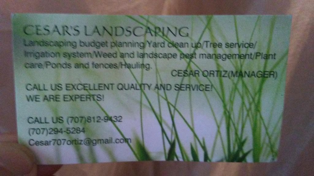 Cesar's Landscaping Services