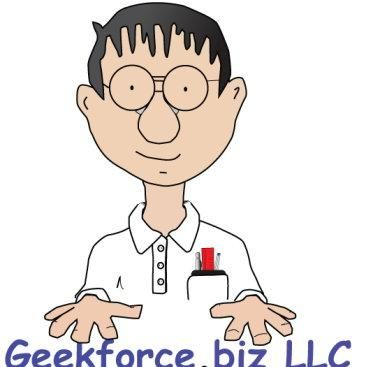 Avatar for GEEKFORCE.BIZ LLC