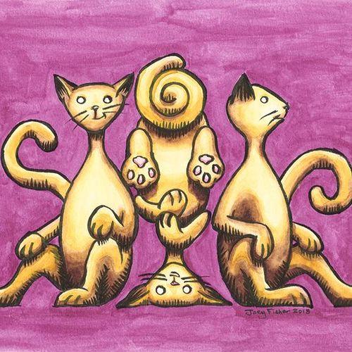 Cat's Chillin'