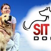 Sit Means Sit - Central Texas