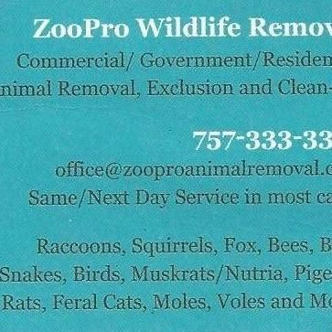 Avatar for ZooPro Wildlife Removal Virginia Beach, VA Thumbtack