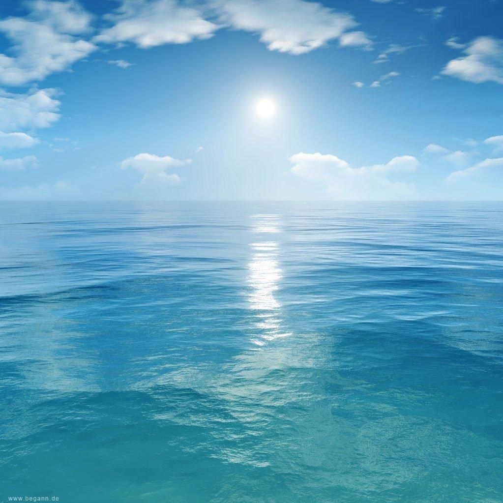 Ocean Blue Pools & Spa llc.