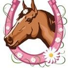 Avatar for LB's Rock N Riding Ranch & Lessons Newcastle, CA Thumbtack