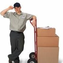 Beehive Movers