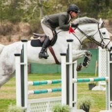 Avatar for Bridges Equestrian, Inc. San Juan Capistrano, CA Thumbtack