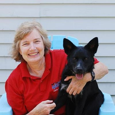 Avatar for Fun With Fido Dog Training and Pet Photography Pittsfield, MA Thumbtack