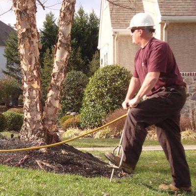 Avatar for Sun Lawn Tree & Shrub Inc. Earleville, MD Thumbtack