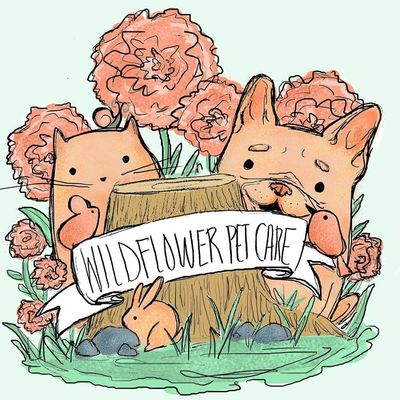 Avatar for Wildflower Pet Care Braintree, MA Thumbtack