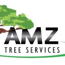 Amazingtree services llc