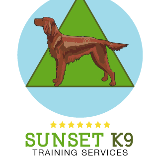Avatar for SunsetK9 Training Services Saint Petersburg, FL Thumbtack