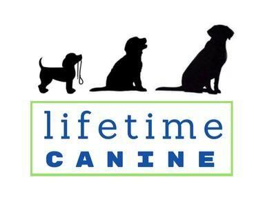 Avatar for Lifetime Canine LLC Wentzville, MO Thumbtack