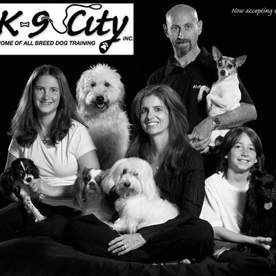 Avatar for K9 City Play 'n Stay inc. San Juan Capistrano, CA Thumbtack