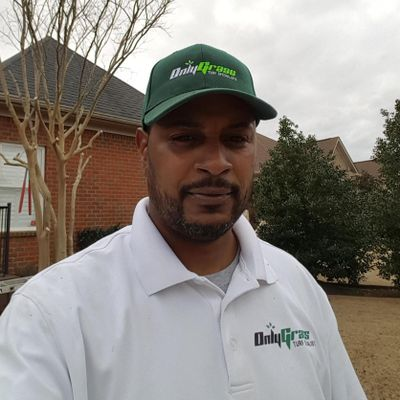 Avatar for Only Grass Turf Specialists Harvest, AL Thumbtack