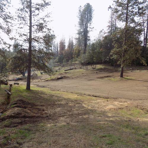 Tree & Brush clearing job Mariposa