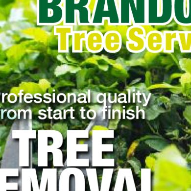 Brandon Tree Service