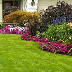Fraley Boys Lawn & Property