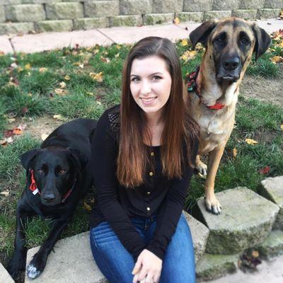 Avatar for Cheyanne's Loving Pet Services Roseville, CA Thumbtack