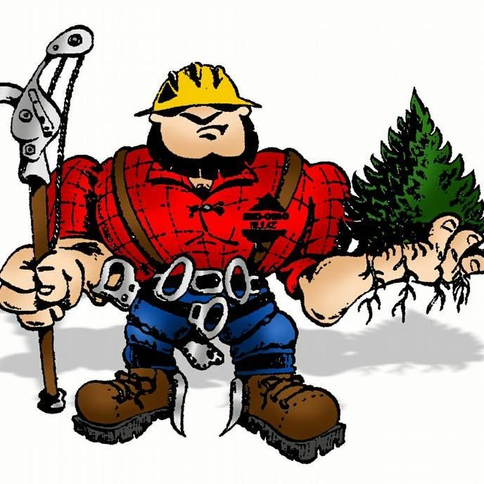 Taylor's Total Tree Service & Stump Removal