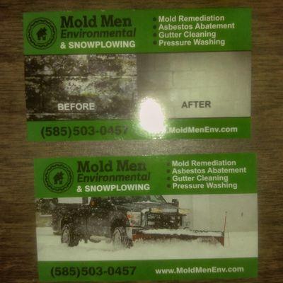 Avatar for Mold Men Environmental LLC