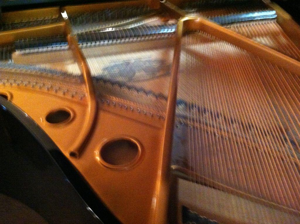 John DiSanto Piano Tuning & Refurbishing at The...
