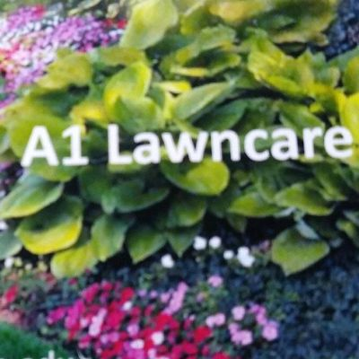 Avatar for A-1 Lawn Care