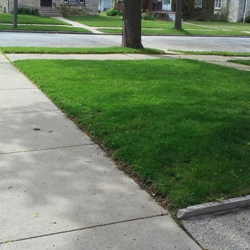 Front Lawn Side view (After)