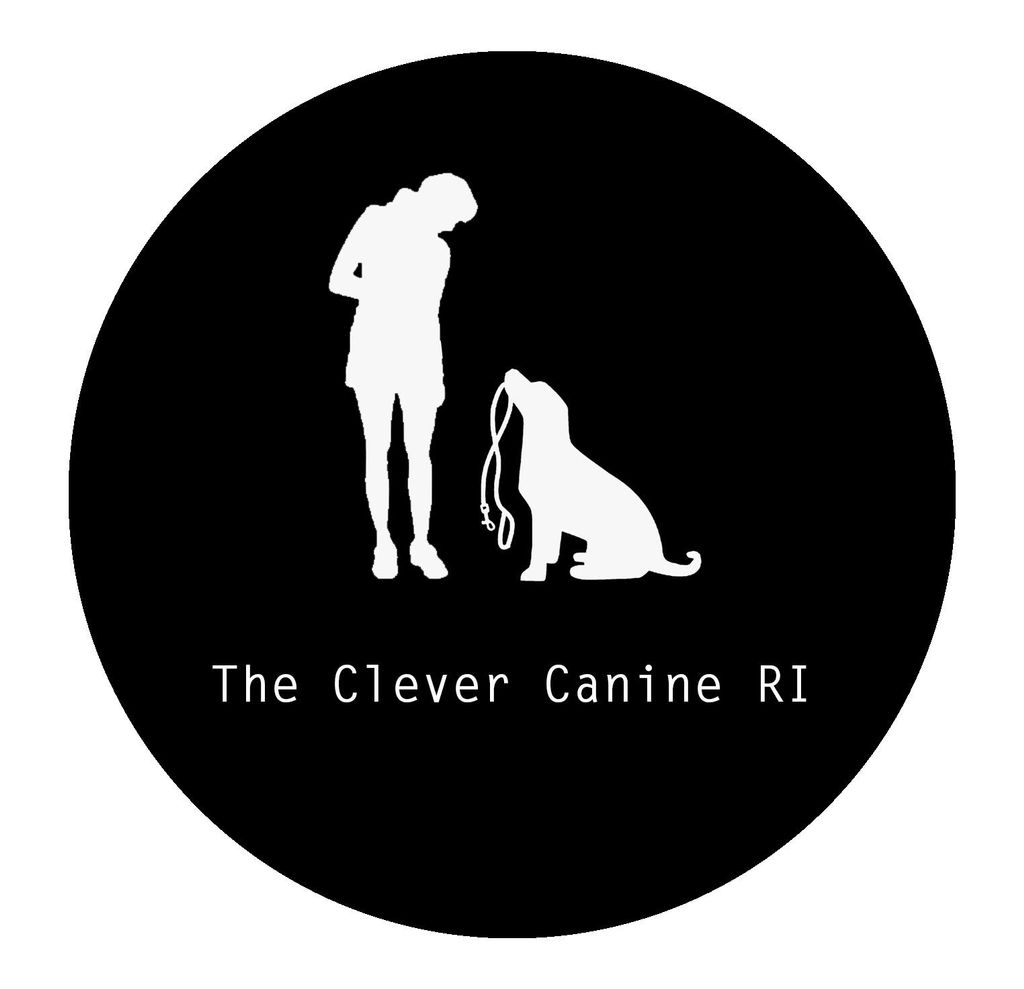 The Clever Canine, RI