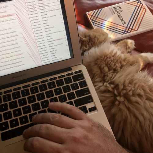 Note: Kitten not assisting with editing.