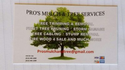 Avatar for Pros mulch and tree service Reynoldsburg, OH Thumbtack