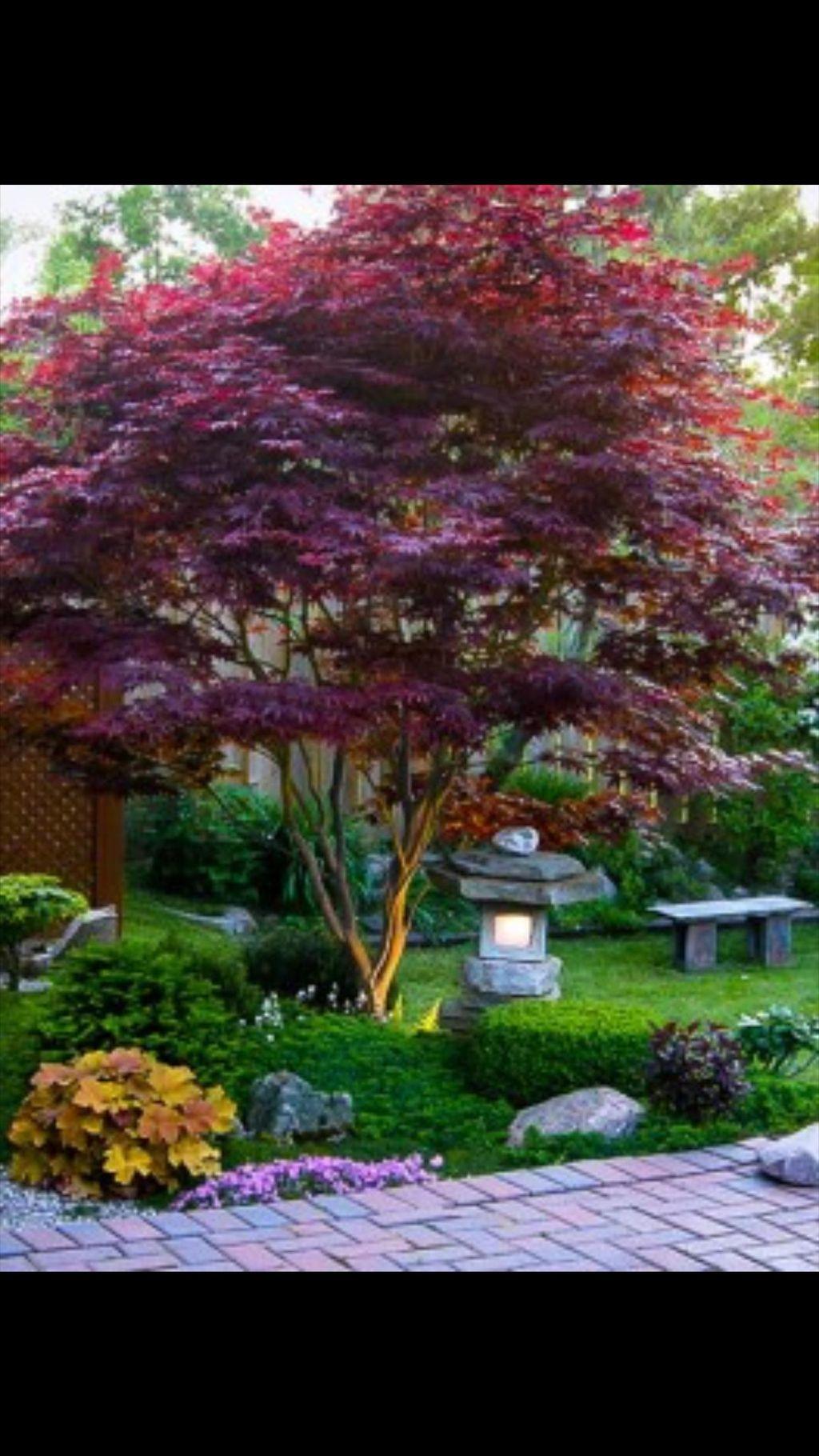 Endeavor Tree Experts, Inc.