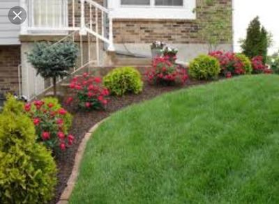 Avatar for Lawn And Landscaping