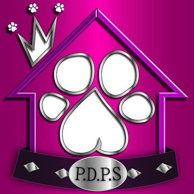 Avatar for Prima Donna Pet Services, LLC