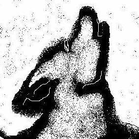 Avatar for Moon Dog Massage, LLC Dayton, OH Thumbtack