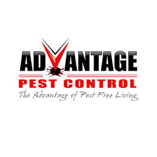 Avatar for Advantage Pest Control Westerville, OH Thumbtack