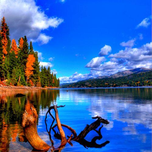 Huckleberry Bay, Payette Lake, McCall, Idaho