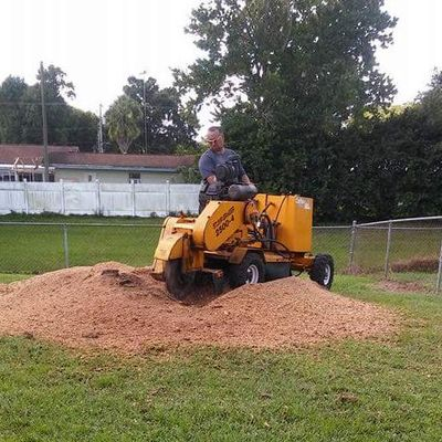 Avatar for cheap as hell stump grindering