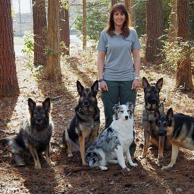 Avatar for Citizen K9 Dog Training & Agility LLC