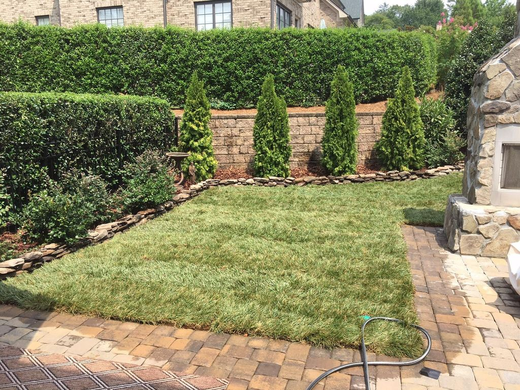 GoGreen Lawn&Landscaping