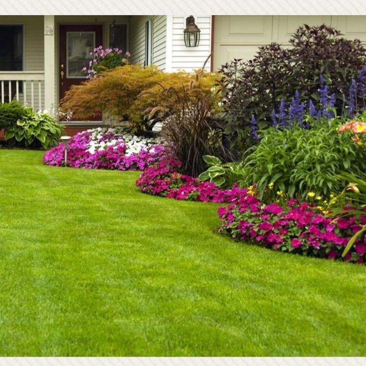 RDS Lawns & Gardens