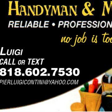Luigi Handyman