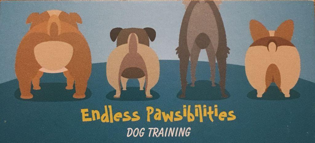 Endless Pawsibilities LLC