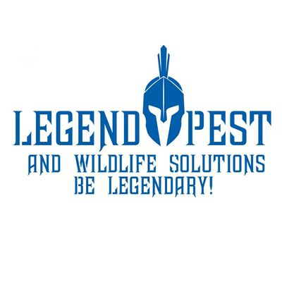 Avatar for Legend Pest and Wildlife Solutions