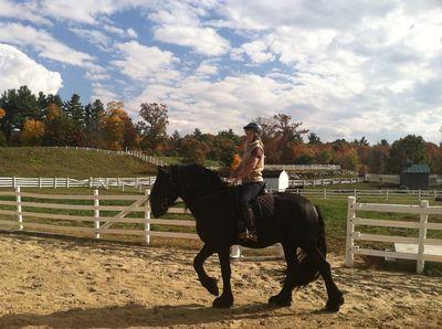 Avatar for Caribou Farm Equine Services