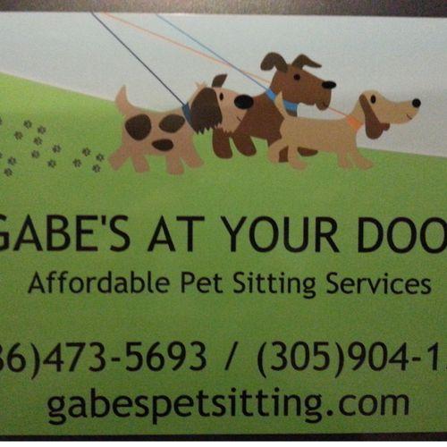 Pet Sitting at it's best!