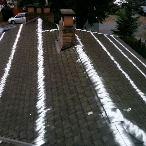 after roof and gutters cleaning we apply moss control treatment