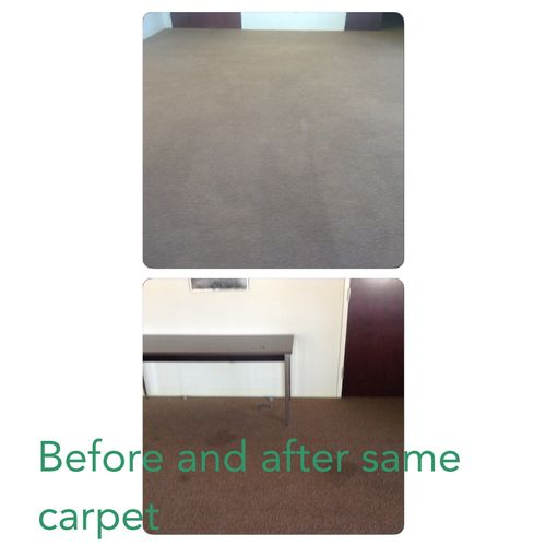 top is after clean pic on carpet, bottom was before