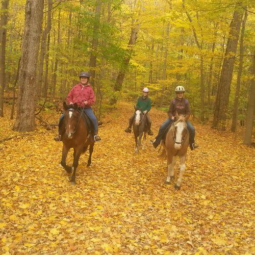 Pleasure Trail Rides