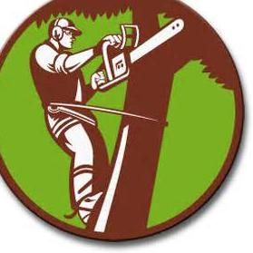 Franklin & Son Tree And Lawn Services